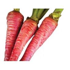 Carrot Halwa - Gajar Halwa