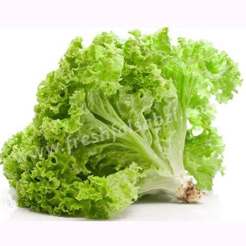Lettuce Leafy - Salad Patta - 250 Gms- Lettuce is a mild ...