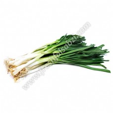 Green Garlic - Hara Lahsun