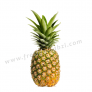 Pineapple Queen - Ananas Rani