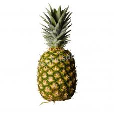 Pineapple Kew - Ananas Raja