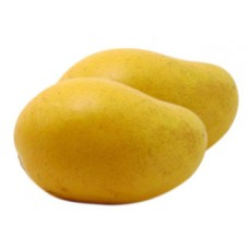 Mango Hamam