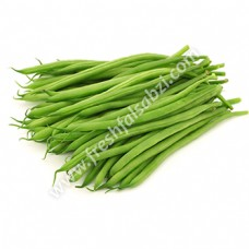 French Beans - France Bean