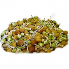 Mixed Sprouts