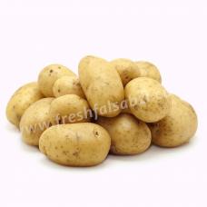 Potato SugarFree  - Aaloo Sugarfree (Chipsona)