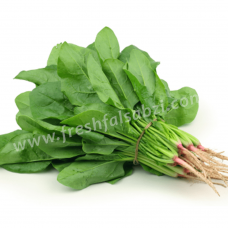 Spinach - Palak