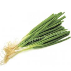 Spring Onion - Pyaj Patta